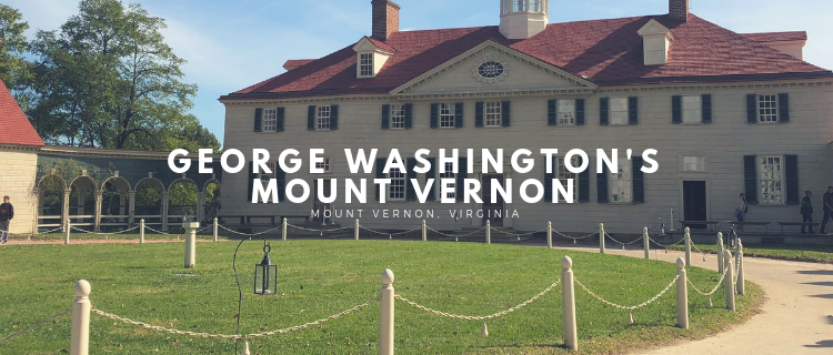 Her Life in Ruins | George Washington's Mount Vernon