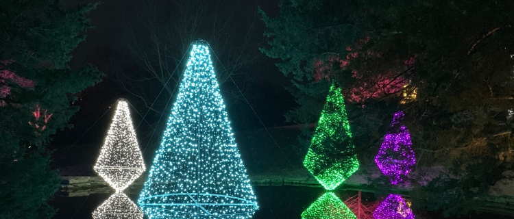 Cheekwood Holiday Lights: A Nashville Night Out | Her Life in Ruins