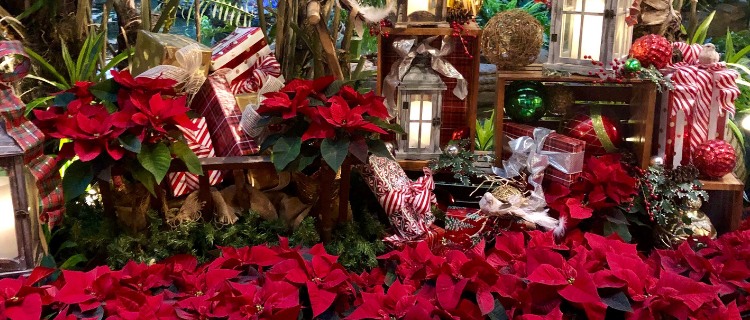 A Country Christmas at Gaylord Opryland Resort | Her Life in Ruins